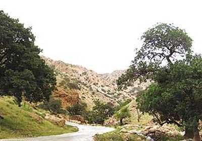 جاده جم ـ فیروزآباد زیباترین جاده ایران خلخالرویایی ترین جاده ایرانمستقیم ترین جاده ایرانعکس خطرناک ترین جاده های ایرانزیباترین جاده های جهانجاده های زیبای مازندرانخلوت ترین جاده های ایرانمرتفع ترین جاده ایران